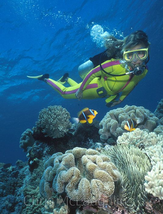 Scuba diving one of my high priority dreams!!