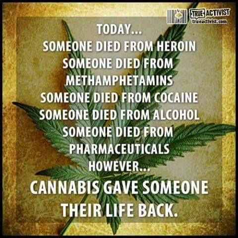 The LD-50 of Cannabis is set at 1:20,000 and 1:40,000 meaning you need to consume 1500lbs of weed in 15 minutes to induce a lethal dose which is impossible.