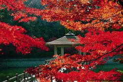 愛知県岡崎市 岡崎東公園 動物園へ遊びに行こう!お出かけ前の下調べ♪ - NAVER まとめ