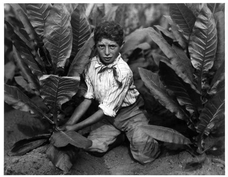 child labor in early 1900 s For early twentieth-century progressive reformers committed to social justice, widespread child labor—especially in coal mines, textile mills, and department stores—was particularly disturbing and as with other progressive crusades, the exposé was a favorite tool.