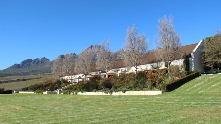 Ernie Els Wines - Stellenbosch