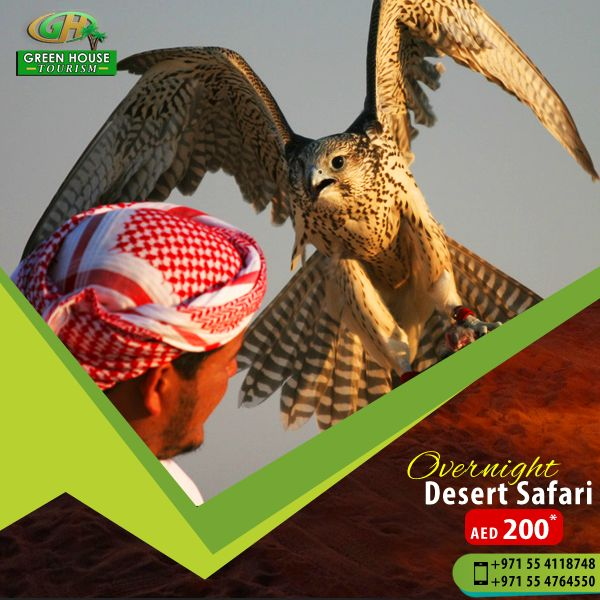 Green House Tourism Dubai offers best Desert Safari Tour and Prices in Dubai, our expert tourists will help you to make your Desert Safari Tour memorable & comfortable in every aspect.