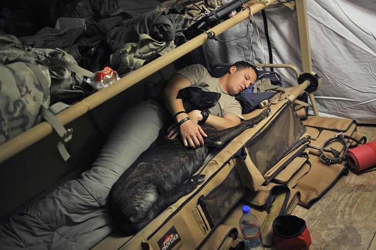 U.S. Army Sergeant Nathan Arriaga of the U.S. Forces Afghanistan K-9 unit, sleeps with Zzarr, a 6-year old Dutch shepherd, on July 24, 2011 at the Forward Operating Base Walton before a patrol mission in the Arghandab district.
