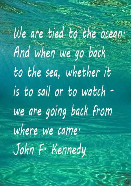 """All of us have in our veins the exact same percentage of salt in our blood that exists in the ocean, and, therefore, we have salt in our blood, in our sweat, in our tears. We are tied to the ocean. And when we go back to the sea -- whether it is to sail or to watch it -- we are going back from whence we came."" -- Speech given at Newport at the dinner before the America's Cup Races, September 1962"