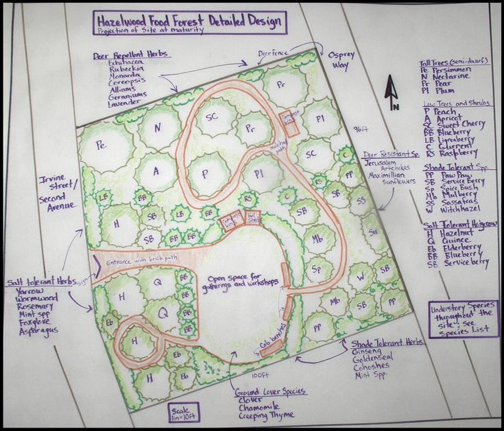 French Country Garden Design Layout: 15 Best Orchard Designs Images On Pinterest