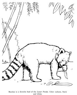 22 best coloring pages images on pinterest draw, drawing and Triceratops Dinosaur Coloring Pages Printable Baby Panda Coloring Pages Printable Donald Duck Coloring Pages Printable