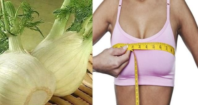 Les seins ont toujours été des instruments de séduction très redoutables pour les femmes. Leur forme, leur consistance et leur taille sont d'autant de crit