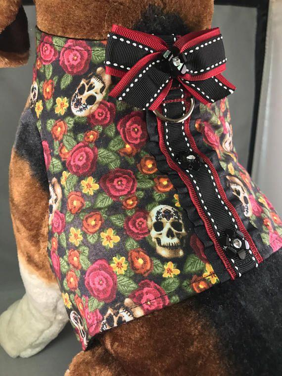 Rosas calaveras y arnés del perro