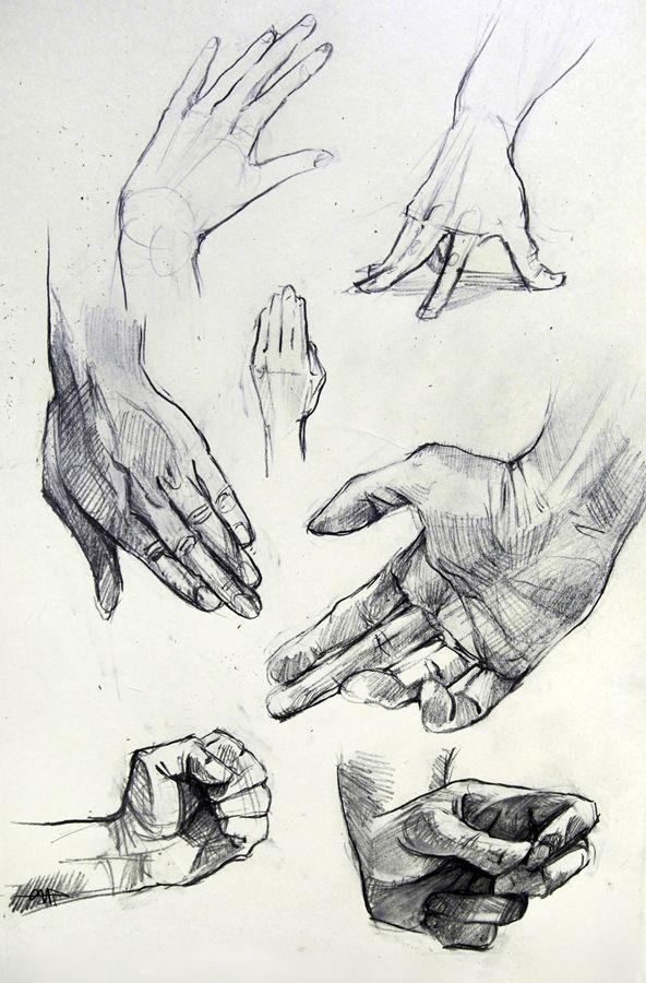Anatomy Hand Studies by yolque.deviantart.com on @DeviantArt