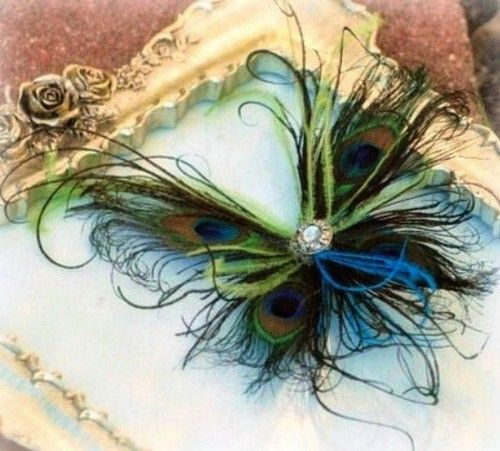 Peacock feather butterfly ♥