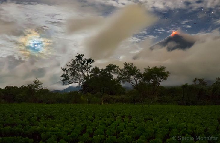 A Horizon with Blue and Red    What's happening on the horizon? The horizon itself past a spinach field in Guatemala shows not only trees but a large volcano: the Volcán de Fuego (Volcano of Fire). The red glow at the top of the volcano is hot lava. But your eye may also be drawn to the blue circle above the horizon on the left. This circle surrounds the Moon and together with other colors is called a corona. A corona is caused by diffraction of light -- here moonlight -- by small water…