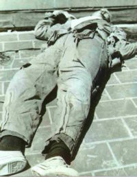 A SNIPER IN THE TOWER: THE CHARLES WHITMAN MURDERS.  U of Tx, 1969.