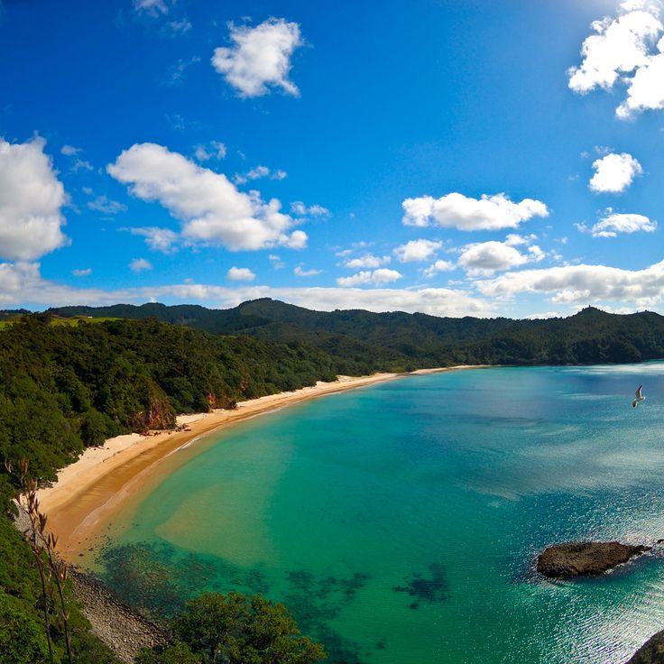 new zealand | Beautiful Beach, New Zealand iPad Wallpaper