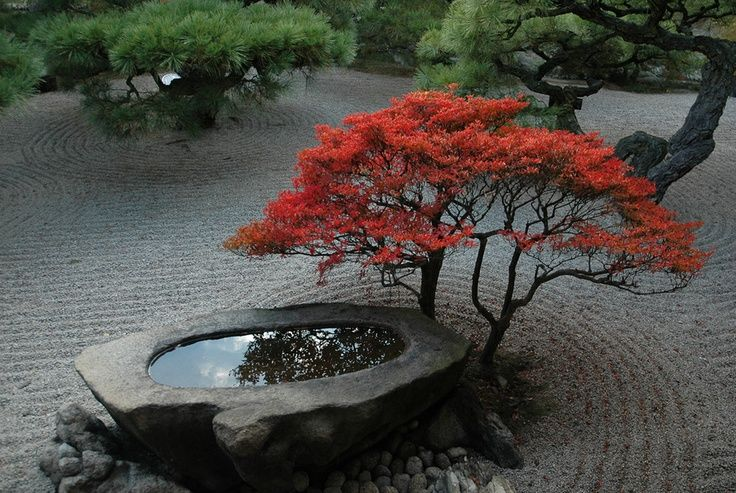 Japanese stone basin google search wabi sabi for Garden design with japanese maple