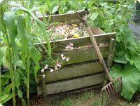 ΠΡΑΣΙΝΟ: ΦΤΙΑΞΤΕ ΕΝΑΝ ΚΑΔΟ ΚΟΜΠΟΣΤΟΠΟΙΗΣΗΣ!  Ξεκινήστε τοποθετώντας ένα παχύ στρώμα από εφημερίδα ή ξερά φύλλα στον πάτο του κάδου κομποστοποίησης.    Πετάξετε μέσα όλα τα οργανικά σας σκουπίδια, όπως : φύλλα που έχουν πέσει από τα φυτά σας γρασίδι, τσουκνίδες, αγριόχορτα που βγάλατε από τον κήπο φλούδες φρούτων και υπολλείματα λαχανικών φακελάκια τσαγιού, κόκκους καφέ χαρτοπετσέτες, εφημερίδες θρυμματισμένα τσόφλια αυγών πριονίδια, ροκανίδια κοπριά φυτοφάγων ζώων Προτιμήστε να αποφύγετε να…