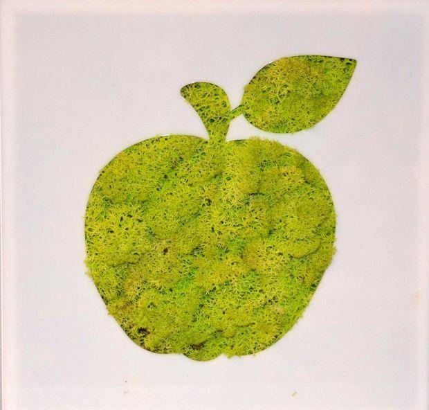 Zdjęcie numer 7 w galerii - Obrazy z mchu i kwiatów