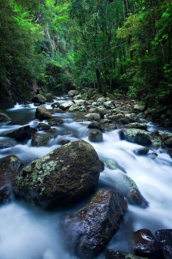 Creek, Lamington National Park, Queensland LM300D