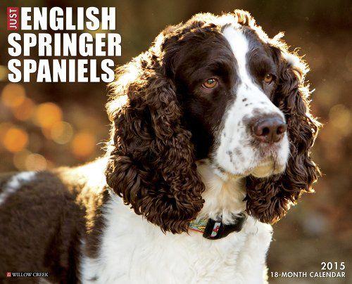 #book  Just English Springer Spaniels 2015 Wall Calendar  #books