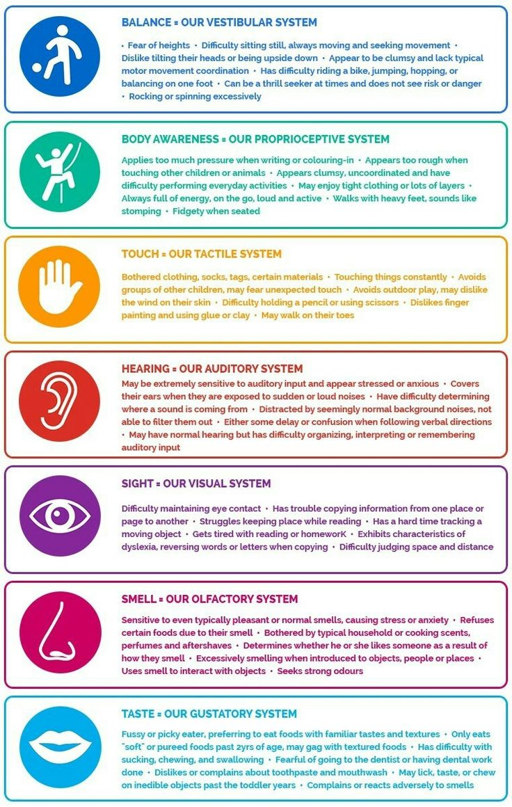 Free resource from the Sensory Wise website. Our sensory systems with Sensory…