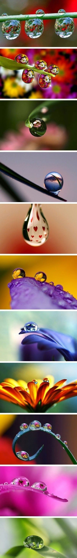 Fabulous images