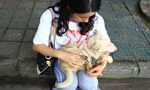 An animal rights activist buys a dog from a vendor in Yulin, China