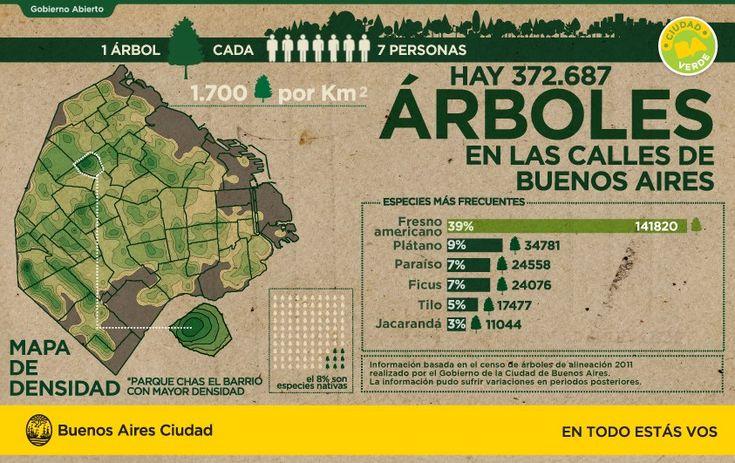 Semana del Árbol en la Ciudad   Noticias   Buenos Aires Ciudad - Gobierno de la Ciudad Autónoma de Buenos Aires