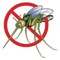 If the heat doesn't keep you indoors this summer, the mosquitoes will.  Tired of being ran out of your own back yard by these flying insects?  Are you forced to pay outrageous - and ongoing -- fees to prevent or repel them?  Then you will appreciate the following low cost tips to help repel Mosquitoes.