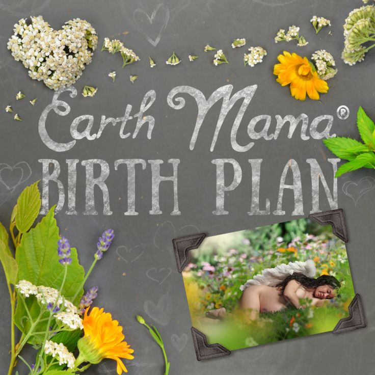 Earth Mama's Birth Plan -- Whether you prefer a natural, non-medicated birth or a medically assisted (epidural) delivery, Earth Mama's Free Baby Birth Plan is a perfect tool for having your desires met during labor.