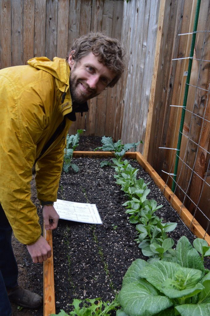 Grow your own food this summer #urbanfarming