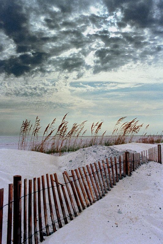 Pensacola Beach, FL Copyright: Gregory Wagner