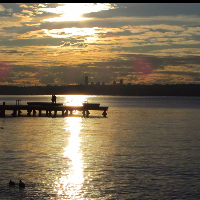 Sunset Lake Apartments: 1000+ Images About Places Near Bellevue- Kirkland On