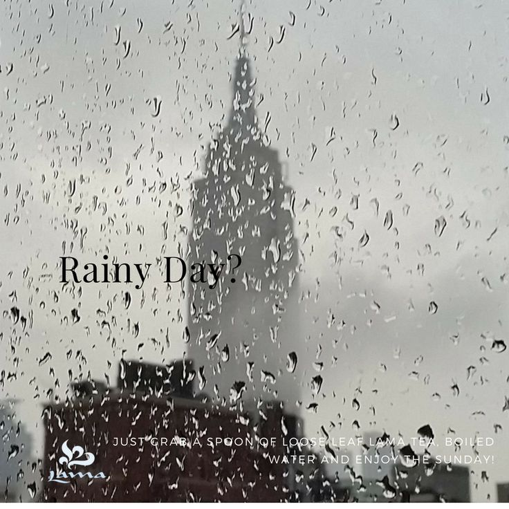 It's rainy day in NY City... 🌧️☔ Just grab a spoon of loose leaf Lama Tea of your preference, Boiled water and Enjoy the rest of the day. #ILoveLamaTeas #lamateausa #lamatea #tea #tealovers .🌱☕ #YoBeboLAMA #LAMA #Te #Infusion 🍃😍 #buylamateas #enjoyLamaTea #drinkLamaTeas #finetea #rainingday #happyness #Sunday #enjoyingthelittlething #behappy 🙂 www.lamateas.com