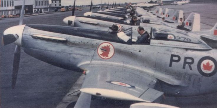 Here's a picture of some RCAF 403 Squadron Mustangs with the unit wolf head insignia under the cockpit.