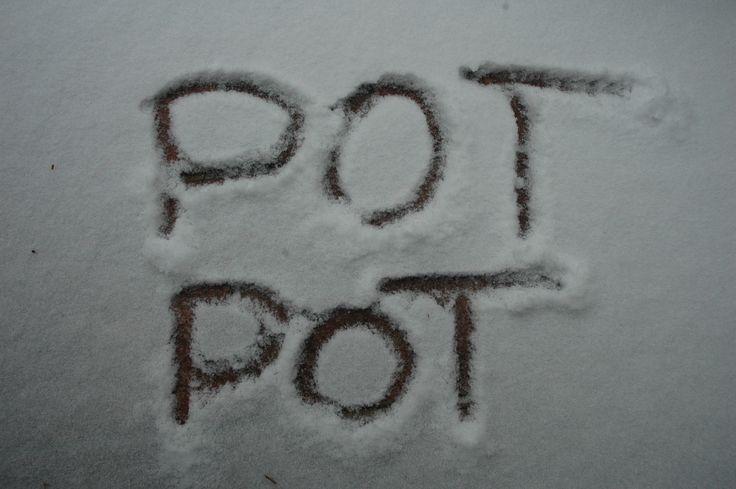 napis potpot na sniegu