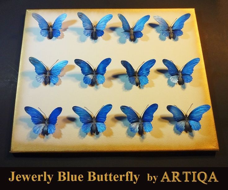Enchanting Blue Butterfly Wall Art Festooning - Wall Art Design ...