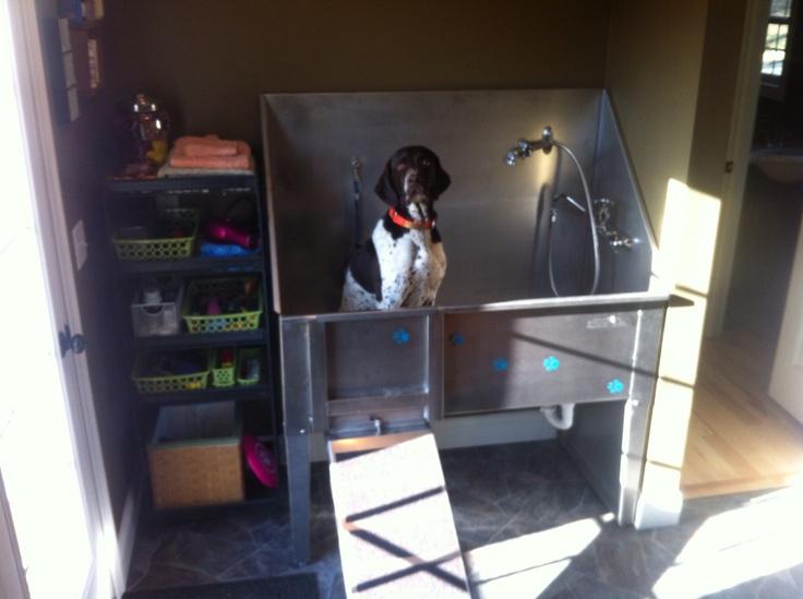 17 Best Images About Diy Dog Spa On Pinterest Pets Dog