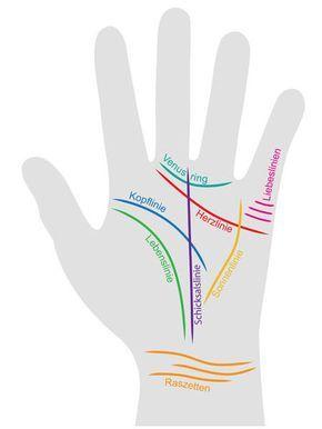 Handlesen: So funktioniert's!  Handlesen ist gar nicht so kompliziert: Lesen Sie immer aus der aktiven Hand - also der linken bei Linkshändern und der rechten bei Rechtshändern.<