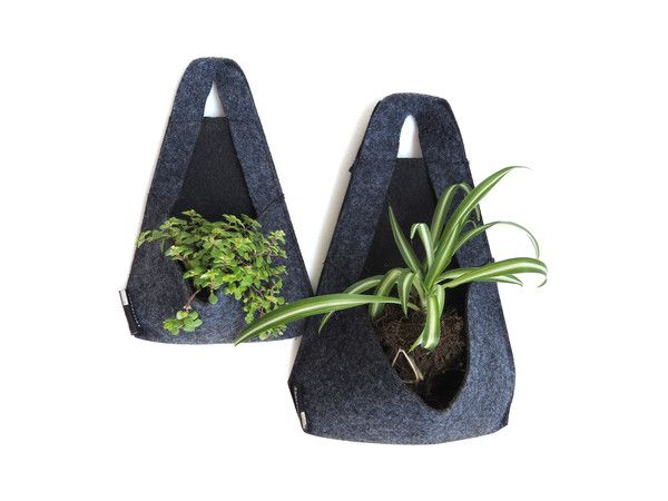 La porosidad del fieltro industrial permite que lasplantas absorban sólo el agua…