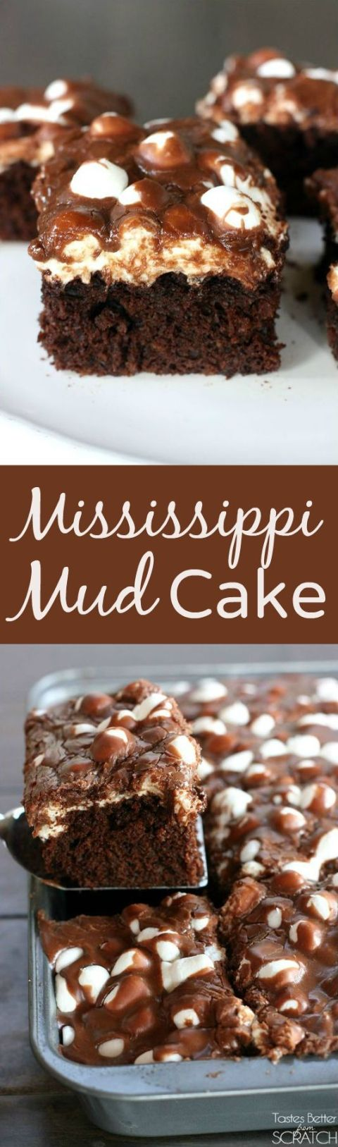 Chocolate cake with melted marshmallows and warm chocolate frosting make up this AMAZING Mississippi Mud Cake! Recipe from Tastes Better From Scratch