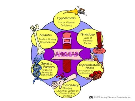 Types of Anemia. Of course ifind this a few hrs after my test on it lol