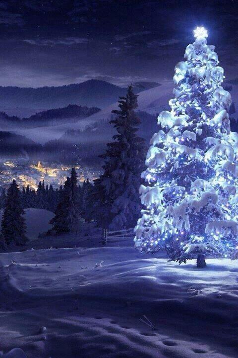 Blue Christmas seems pretty bright this year! More