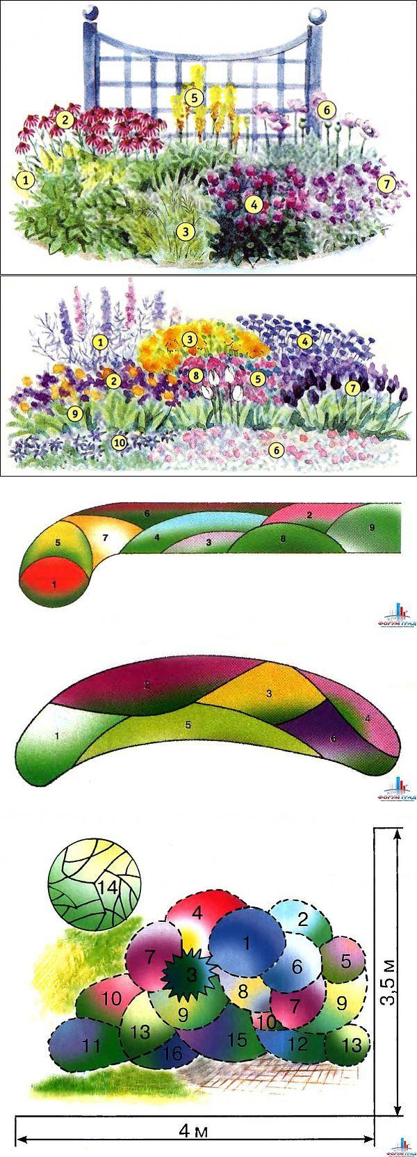 Цветы для сада+схемы красивых цветников | Наш дом | Цветы | Постила