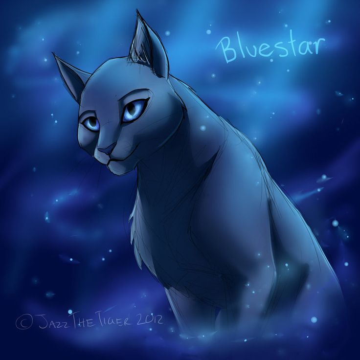 32 best images about warrior cats on pinterest warrior