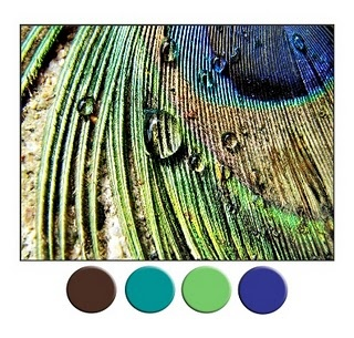 Peacock blues and greens with rich brown...this color scheme with loads of white...love!