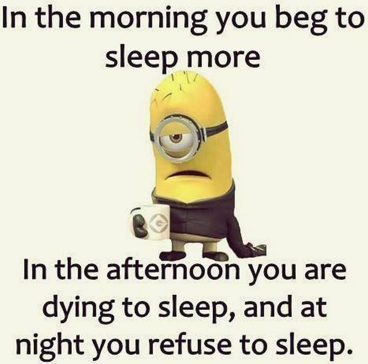 Today Funny pictures of  Minions with quotes (08:00:13 PM, Thursday 24, September 2015 PDT) – 10 pics