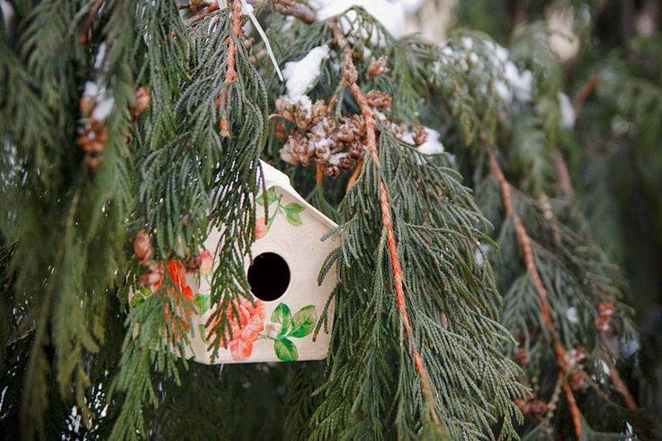 MAMTWORY: Budka dla ptaków / Feeder for birds