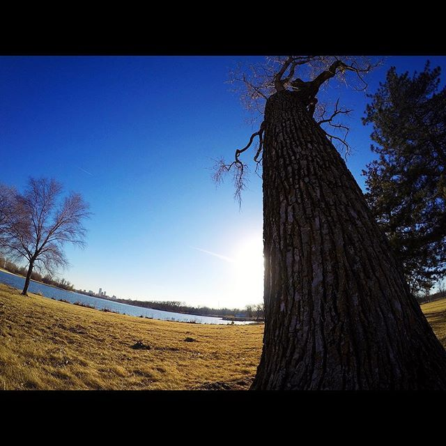 || Omaha, OMAHA! || . . . Simple & easy three mile run before a quick flight to Kansas City. A sunny, 50 degree Nebraska day makes for all the positive running vibes. Who knew there would be such a beautiful park literally right next to the airport?! Snagged this photo during my cool down. Not sure about you guys but I seriously cannot say the word Omaha without the urge to scream it like Peyton Manning playing for the Broncos in the red zone! Happy Hump Day & cheers -GRC By…