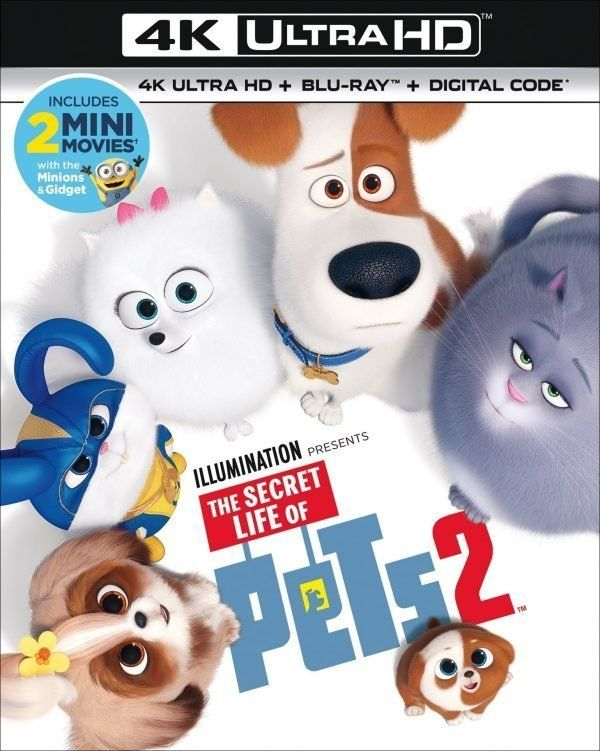 The Secret Life Of Pets 2 Digital And Blu Ray Christy S Cozy Corners Secret Life Of Pets Secret Life Pets