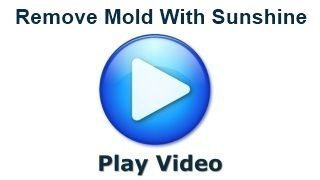 How To Kill Mold With Sunshine | Mold Removal
