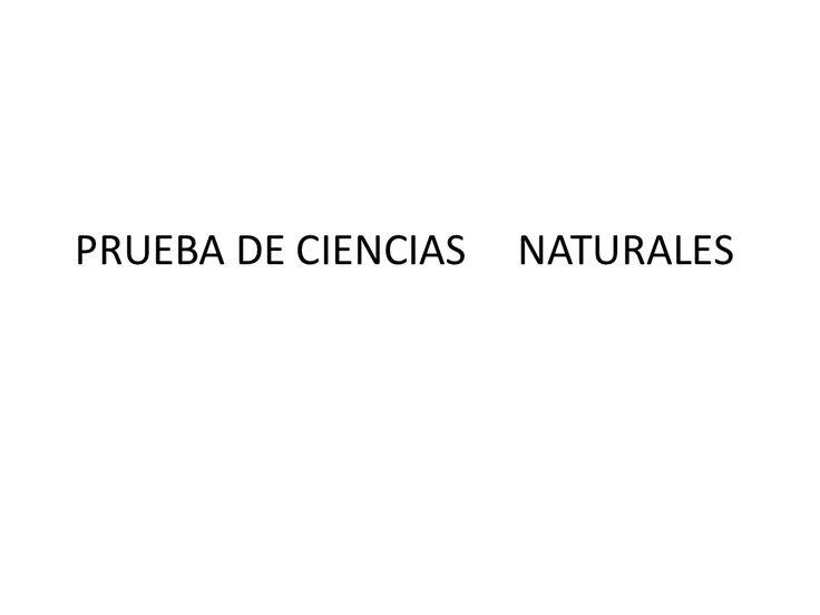 Prueba de ciencias naturales - c.respuestas by M Loreto Concha Campano via slideshare